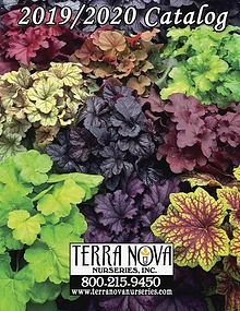 TERRA NOVA® Nurseries, Inc.