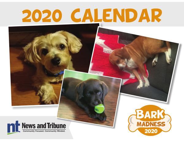Bark Madness Calendar 2020