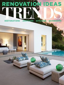 NZ Renovation Trends