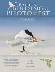 Florida's Birding & Photo Fest official guide