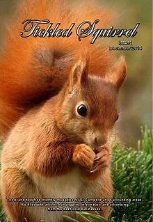 Tickled Squirrel