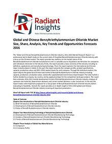 Benzyltriethylammonium Chloride Market Share 2016