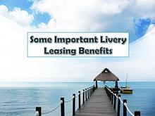 Some Important Livery Leasing Benefits