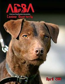 Canine Quarterly - ADBA