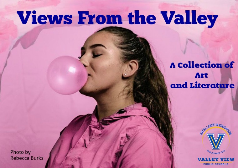 Views from the Valley Literary Magazine