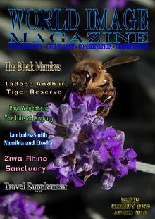 World Image Magazine