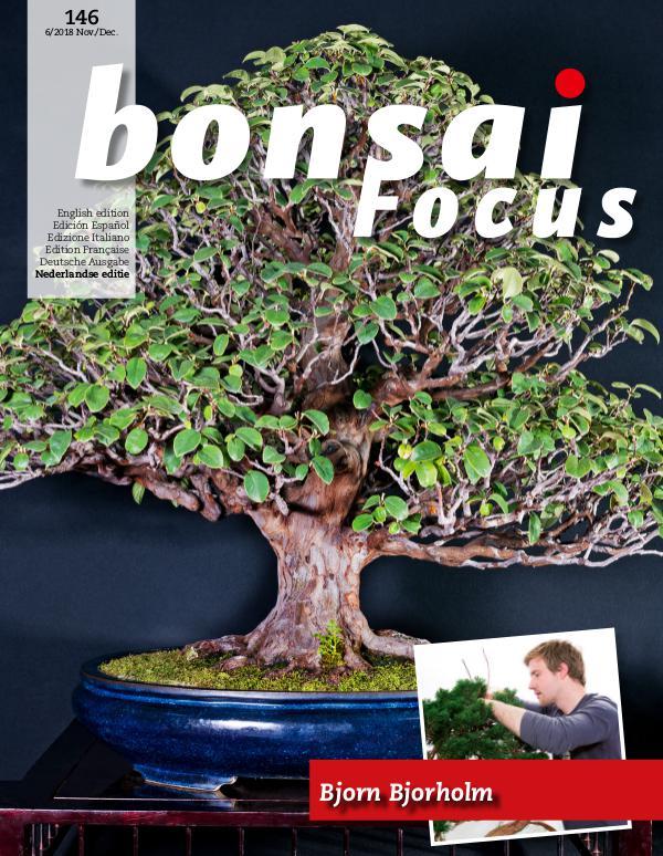 BONSAI FOCUS - Nederlands 2018-6