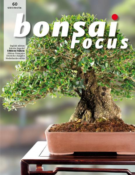 BONSAI FOCUS - Italiano 2015-6