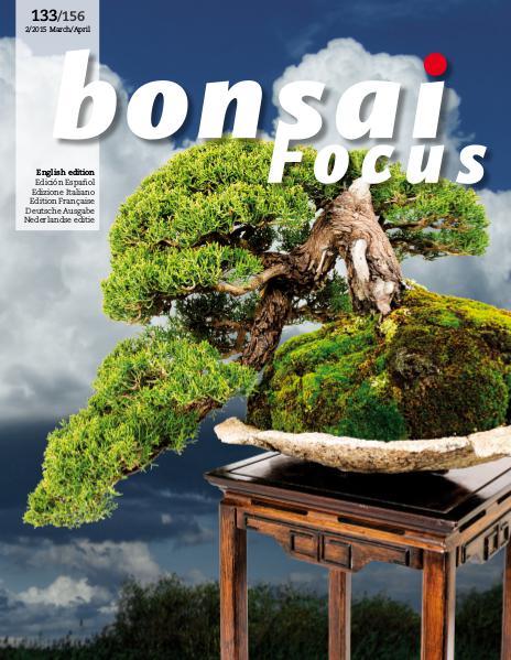 BONSAI FOCUS - English 2015-2