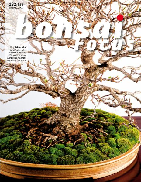 BONSAI FOCUS - English 2015-1
