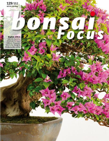 BONSAI FOCUS - English 2014-4