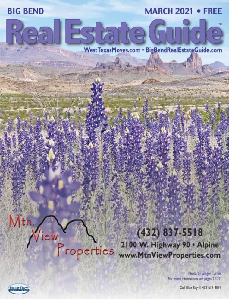 Big Bend Real Estate Guide March 2021