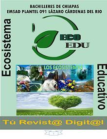 Ecosistema y Tipos de ecosistemas