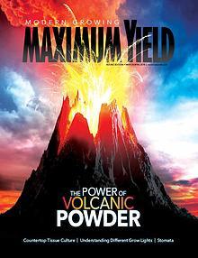Maximum Yield Australia/New Zealand
