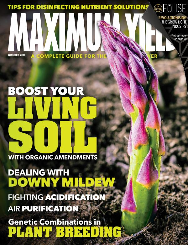 Maximum Yield Australia/New Zealand November/December 2020