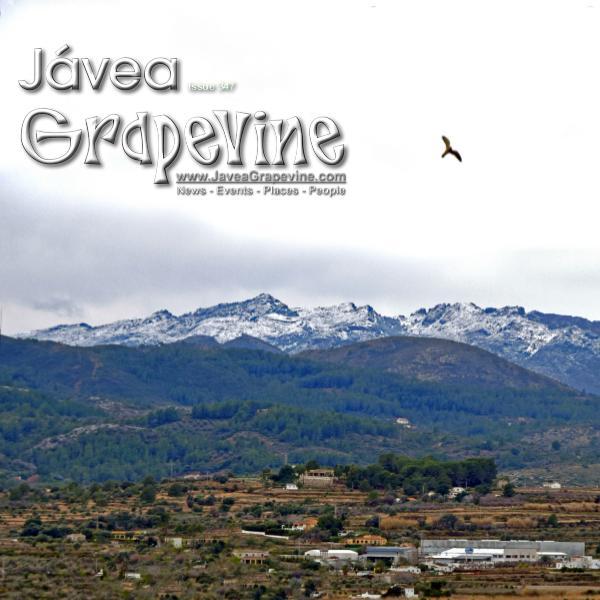 Javea Grapevine 347
