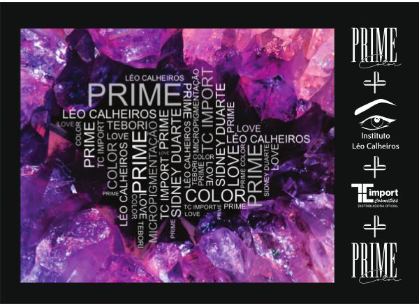PRIME COLOR 2018