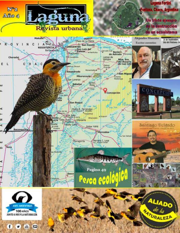 Mi primera revista Laguna, Revista urbana – N° 2–Año 4