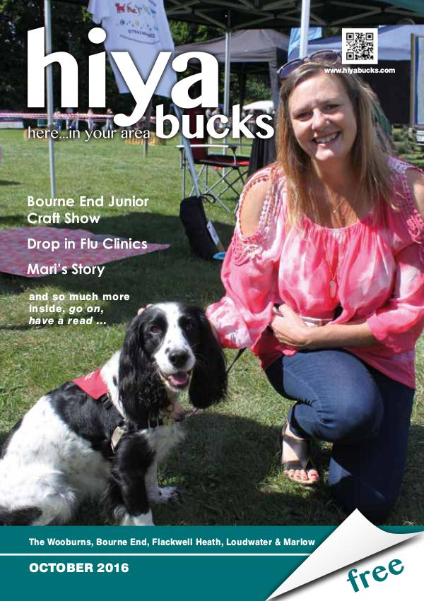 hiya bucks in Bourne End, Flackwell Heath, Marlow, Wycombe, Wooburn October 2016