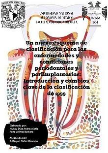 Un nuevo esquema de clasificación para las enfermedades y condiciones