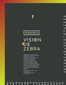 Visión de zebra - Libro I - Nov. 2018