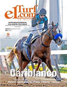 Revista Elturf.com