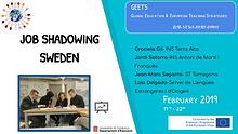 Job Shadowing-Sverige