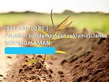 Jasa Reklamasi Lahan Tambang, 0822 600 700 80, TERMURAH