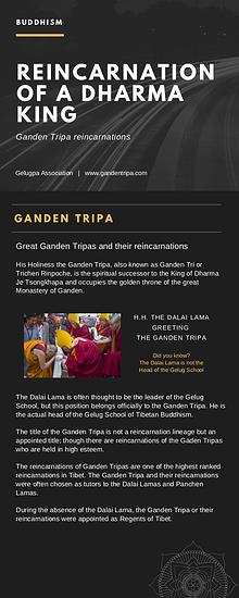 Reincarnation Of A Dharma King Ganden Tripa
