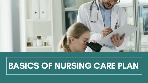 My Assignment Services Basics of Nursing Care Plan