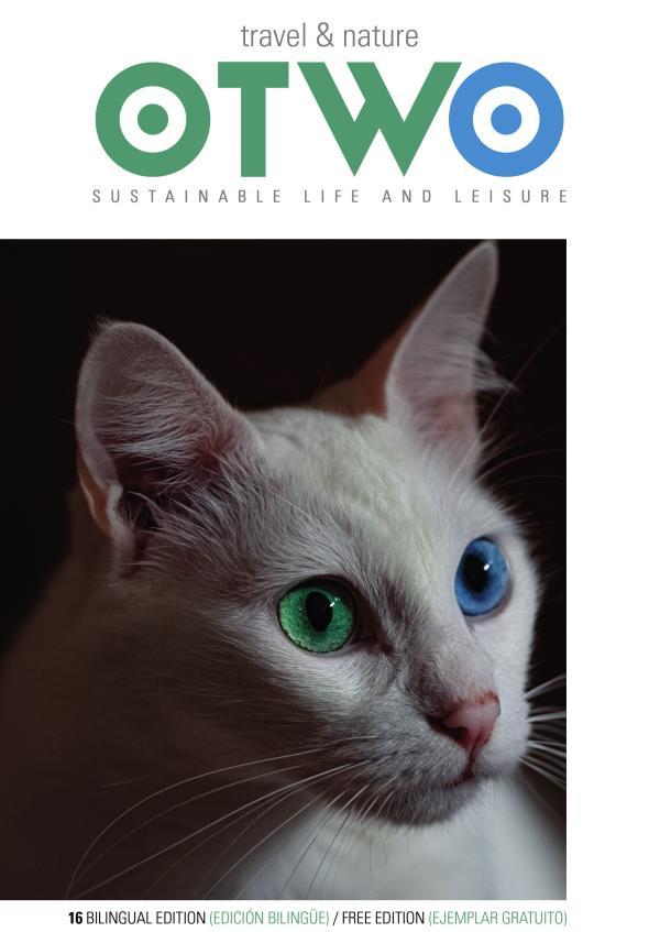 OTWO Magazine November 2020
